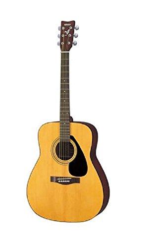 Casio Acoustic Guitar